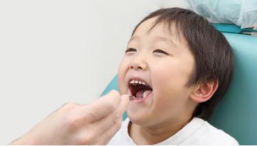 歯並び治療専門医院による安心の治療を他院からのご紹介と当院の患者様からのご紹介が患者様の約80%を占めています
